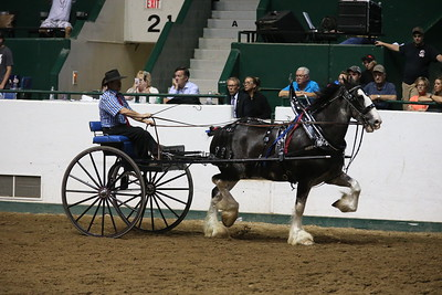 DP1X5289_Single cart Mens Clydesdale