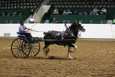 DP1X5313_Single cart Mens Clydesdale
