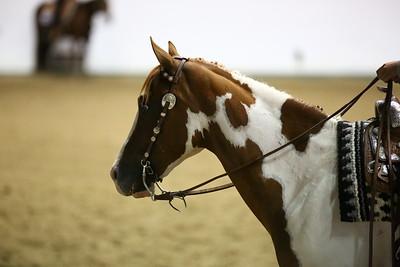 ER9A0158_WSCA Western Horsemanship 17 and Under