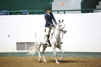 Childrens Hunter Pony Warm up-1424