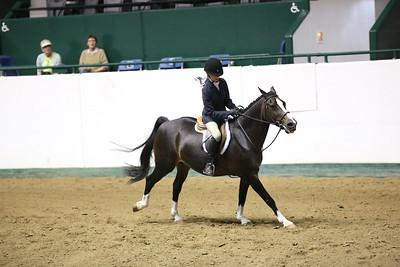 Childrens Hunter Pony Warm up-1448