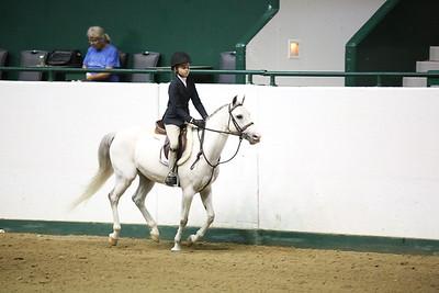 Childrens Hunter Pony Warm up-1407