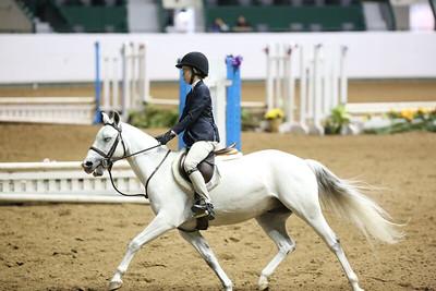 Childrens Hunter Pony Warm up-1412