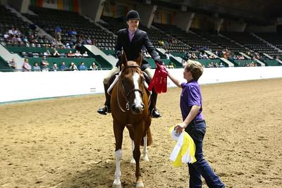 2212 APHA Youth Hunter Under Saddle-1346