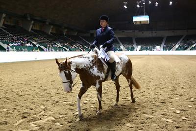 2212 APHA Youth Hunter Under Saddle-1357