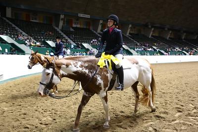 2212 APHA Youth Hunter Under Saddle-1354