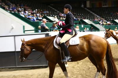 2212 APHA Youth Hunter Under Saddle-1350