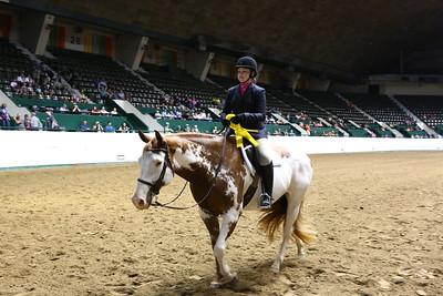 2212 APHA Youth Hunter Under Saddle-1351