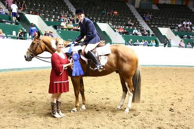 2212 APHA Youth Hunter Under Saddle-1345