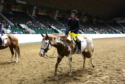 2212 APHA Youth Hunter Under Saddle-1352