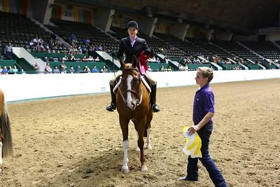 2212 APHA Youth Hunter Under Saddle-1347