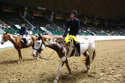 2212 APHA Youth Hunter Under Saddle-1353