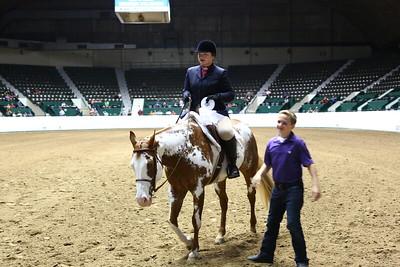 2212 APHA Youth Hunter Under Saddle-1355