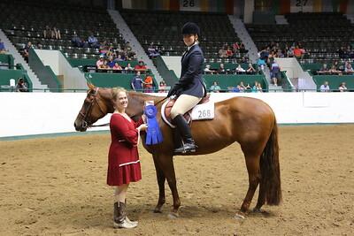 2408 AQHA Youth Hunter Under Saddle-1383