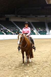 2420 AQHA Amateur Western Pleasure-1317