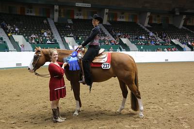 2520 PtHA Amateur Western Pleasure-1396
