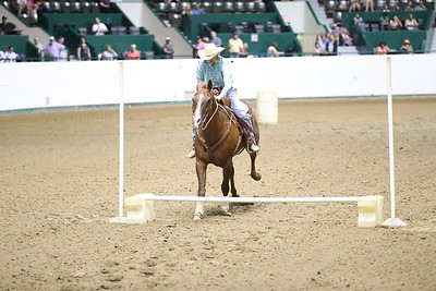 2624 WSCA Jumping Figure 8, Stake-7033