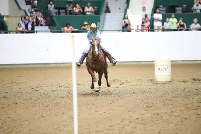 2624 WSCA Jumping Figure 8, Stake-7030