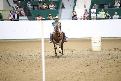 2624 WSCA Jumping Figure 8, Stake-7029