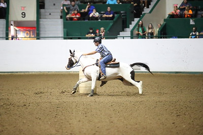 2624 WSCA Jumping Figure 8, Stake-7047