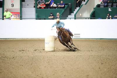 2624 WSCA Jumping Figure 8, Stake-7020