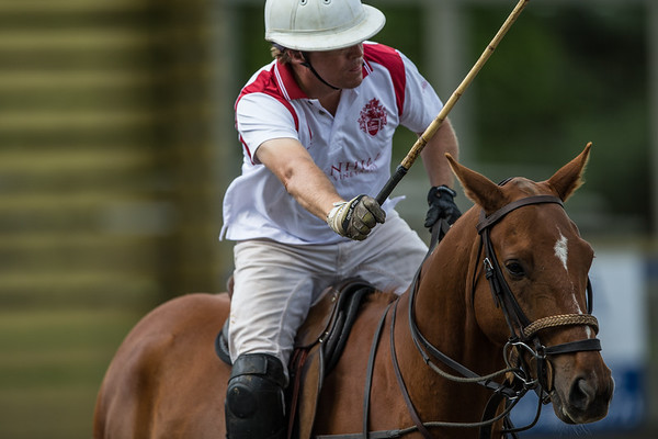 GM Polo_1Dx_14 May 2016-092