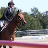 Georgia's Jessica Blum rides Jake during the Bulldog's competition with Alabama at the UGA Equestrian Complex on Sunday, October 2,, 2016 in Bishop, Georgia. (Photo by Cory A. Cole)