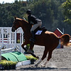 Meg O'Mara rides Paris during the Bulldog's competition with Alabama at the UGA Equestrian Complex on Sunday, October 2,, 2016 in Bishop, Georgia. (Photo by Cory A. Cole)
