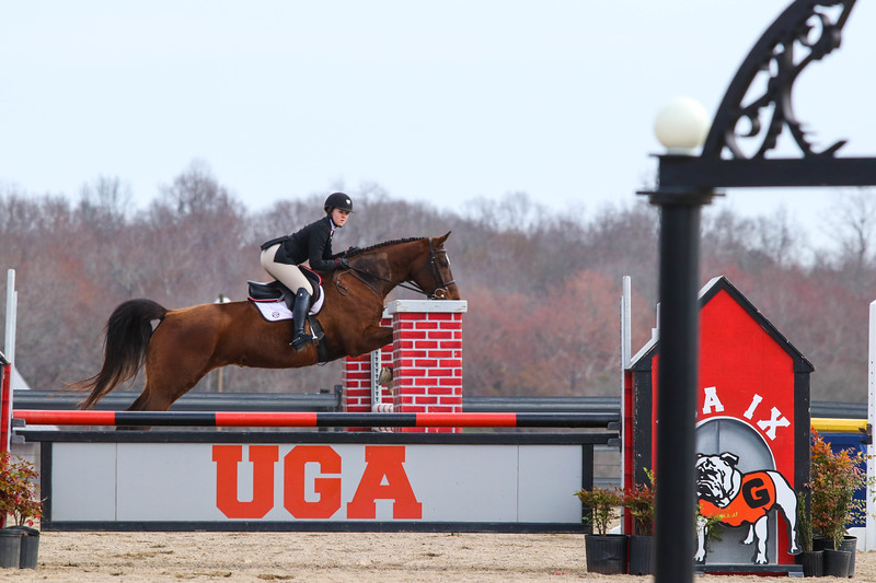 Georgia's Maddy Darst rides Lola during an UGA equestrian meet. (Photo by Cory A. Cole / Georgia Sports Communication)