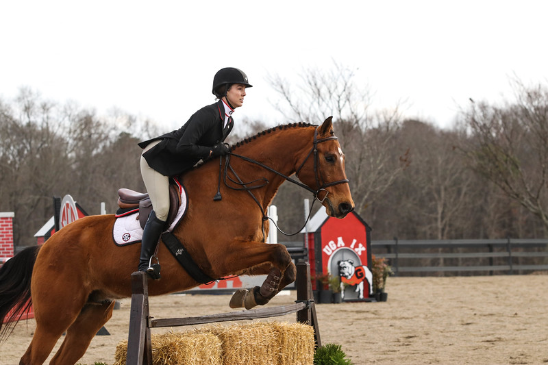 Georgia's Meg O'Mara rides Princeton during an equestrian meet at the UGA Equestrian Complex in Bishop, GA (Photo by Cory A. Cole/Georgia Sports Communication)