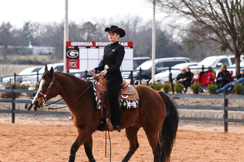 Georgia's Payton Anderson rides Otto during a UGA Equestrian meet. (Photo by Cory A. Cole / Georgia Sports Communication)