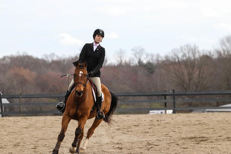 Georgia's Meg O'Mara rides Princeton - UGA equestrian team (Photo by Cory A. Cole / Georgia Sports Communications)