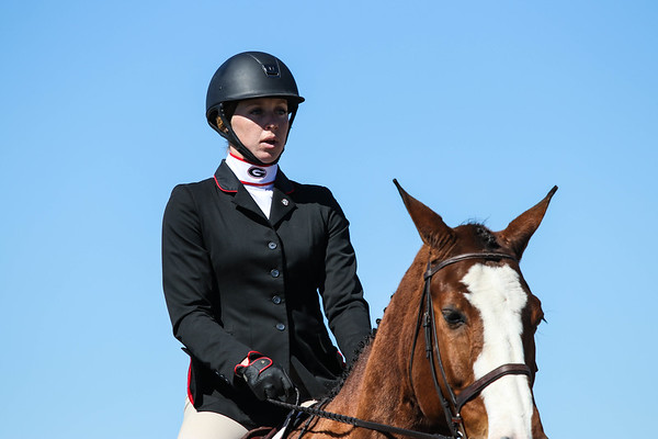 Georgia's Addyson Cord with Roman during an UGA equestrian event. (Photo by Cory Cole / Georgia Sports Communication)