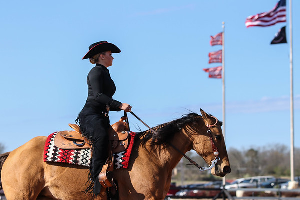 Georgia's Bailey Anderson with Dungaree during a UGA equestrian match (Photo by Cory A. Cole  / Georgia Sports Communication)