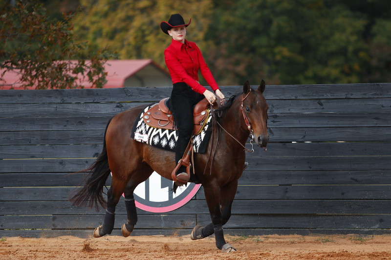 Members of the Georgia Equestrian team compete during a meet at the UGA Equestrian Complex in Bishop, GA on Friday, Nov. 3, 2017.  (Photo by Steffenie Burns / Georgia Sports Communication)
