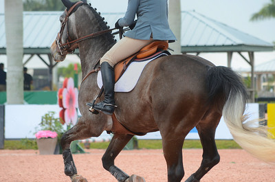 Brown horse with rider galloping towards a jump at a competitive equestrian event