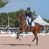 WELLINGTON, FLORIDA - February 11, 2018: Adequan Global Dressage Festival 5 competitors in Wellington, Florida