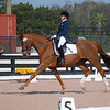 WELLINGTON, FLORIDA - February 11, 2018: Adequan Global Dressage Festival 5 competitors Meredith Wilson and Rose Royce in Wellington, Florida