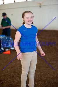 A Rising Star Equestrian Center