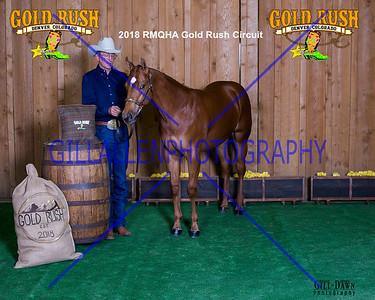 TDP_7481 GoldRush