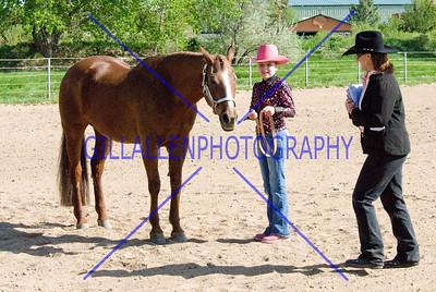 HorseShow-2574-45