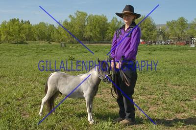 HorseShow-1531-16