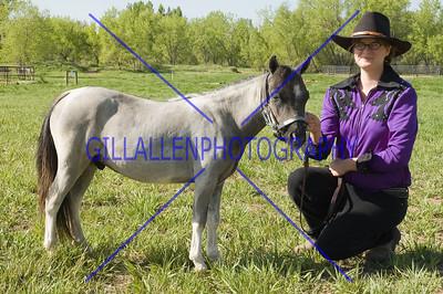 HorseShow-1534-19