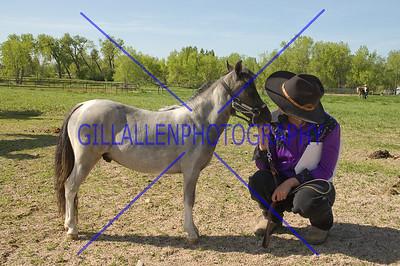 HorseShow-1522-7