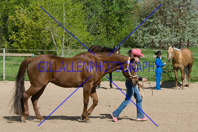 HorseShow-2569-40