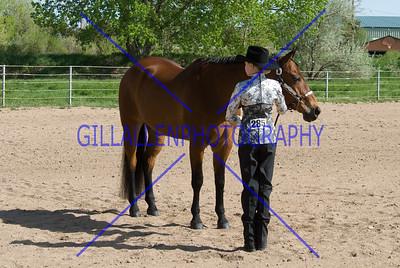 HorseShow-2566-37