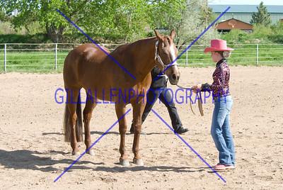 HorseShow-2575-46