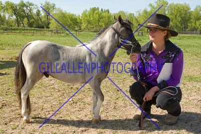 HorseShow-1521-6