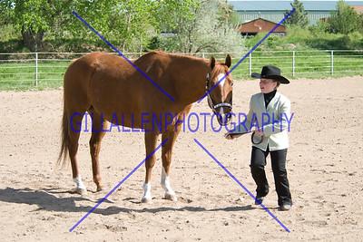 HorseShow-2556-27