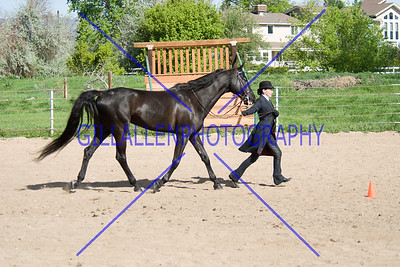HorseShow-2559-30